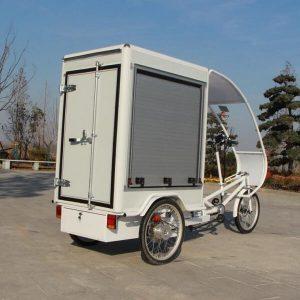 Tricycles cargo électriques KK6003
