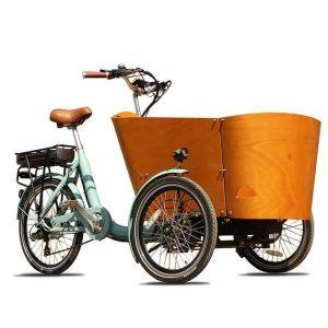 KK6006 Electric Cargo