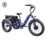 KK6007 Blue Front Loader Electric Cargo Tricycle