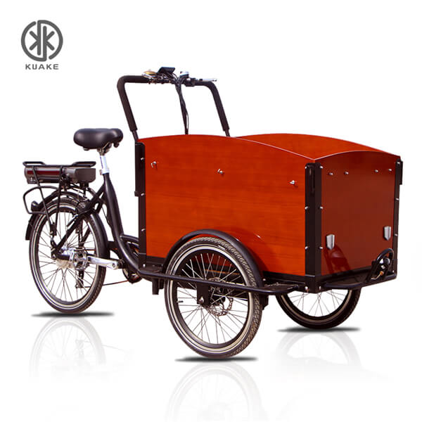 KK6010 Electric Cargo Tricycle